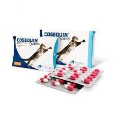 Cosequin Gatos - 45 caps