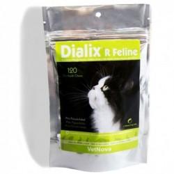 Dialix - R Feline